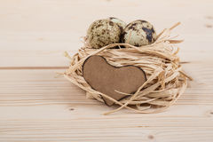 Quail eggs for easter Royalty Free Stock Images