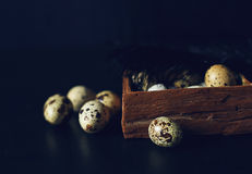 Quail eggs. Quail egg in wood box on the black table Stock Photography