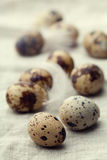 Quail eggs on fabric background Royalty Free Stock Photography