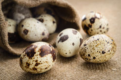 Quail eggs on a fabric background Royalty Free Stock Photos