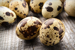Quail eggs on a fabric background Stock Images