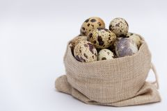 Quail eggs in fabric holder on white background. Free copy space