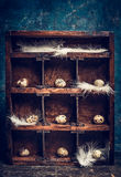 Quail eggs with feathers  on shelves in vintage  wooden box Stock Photos