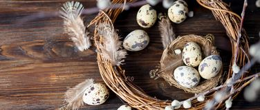 Quail eggs, feathers, willow branches on a wooden table. Vintage effect. Selective focus Banner stock photo