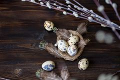 Quail eggs, feathers, willow branches on a wooden table. Vintage effect. Selective focus royalty free stock images