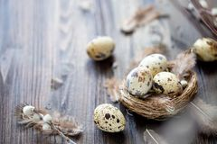 Quail eggs, feathers, willow branches on a wooden table. Vintage effect. Selective focus stock photography