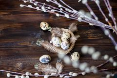 Quail eggs, feathers, willow branches on a wooden table. Vintage effect. Selective focus royalty free stock photo