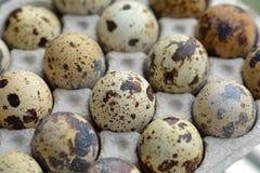 Quail eggs. Fresh quail eggs for a healthy diet Stock Photo