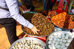 Quail eggs, fried insects Stock Image