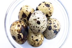 Quail eggs in glass bowl Stock Photos