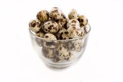 Quail eggs in the glass bowl. Isolated quail eggs in the glass bowl Royalty Free Stock Image