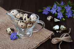 Quail eggs in a glass gravy boat and periwinkle flowers Royalty Free Stock Photo