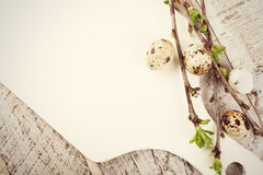 Quail eggs, green branches and white cutting board Stock Images