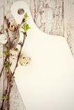 Quail eggs, green branches and white cutting board Royalty Free Stock Photography