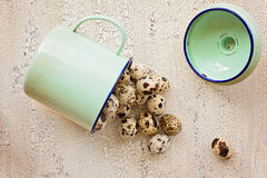Quail eggs in green metal cup, 0n light color wooden background, Stock Photo
