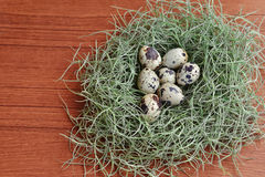 Quail eggs in the green nest on wooden texture Stock Photos