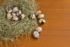 Quail eggs in the green nest on wooden texture Royalty Free Stock Photography