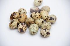Quail eggs on grey background