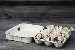 Quail eggs. A group of quail eggs in a box Stock Photography