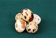 Quail eggs. Royalty Free Stock Photo