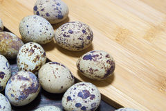Quail eggs from the home farm. Ecological product.. stock photos