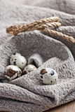 Quail eggs on homespun fabric Royalty Free Stock Photo