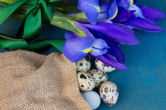 Quail eggs and irise flowers Royalty Free Stock Photos