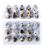 Quail eggs isolate Royalty Free Stock Image