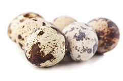 Quail eggs isolated Stock Images