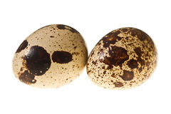 Quail eggs isolated Royalty Free Stock Image