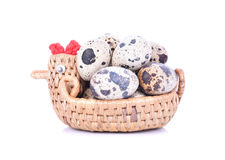 Quail eggs are isolated in basket on a white background Stock Images