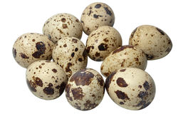 Quail eggs isolated on white. With depth of field blur Stock Photo