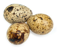 Quail eggs isolated on white the background. Studio shoot Stock Photography