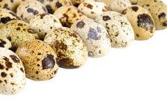 Eggs quail. Quail eggs isolated on white background Royalty Free Stock Photo