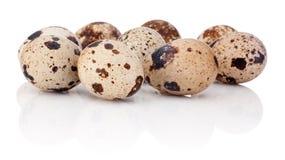 Quail eggs isolated on white background Stock Photo