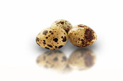 Quail eggs isolated. On white background Royalty Free Stock Photos