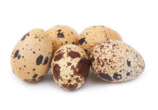 Quail eggs isolated Stock Image