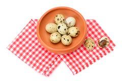 Quail eggs isolated on white Royalty Free Stock Image
