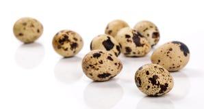 quail eggs isolated on white Stock Photo