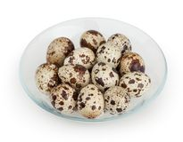 Quail eggs isolated on white background. With clipping path Stock Photography