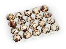 Quail eggs isolated on white background Royalty Free Stock Photography