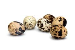Quail eggs on white background royalty free stock photos