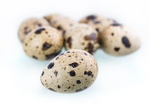Quail eggs isolated on white Stock Photography