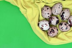 Quail eggs on a light green surface, top view, empty place for t. Ext, recipe royalty free stock photography