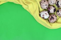 Quail eggs on a light green surface, top view, empty place for t stock images