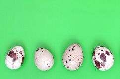 Quail eggs on a light green surface, top view, empty place for t stock photography