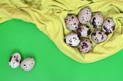 Quail eggs on a light green surface, top view, empty place for t royalty free stock image