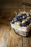 Quail eggs in a lined wire basket, on straw, with lavender twigs, Easter, rustic interior Stock Images