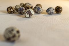Quail eggs on a linen. Cloth with the egg not in focus in the foreground. Still life in warm tones, side view, at eye level Stock Image