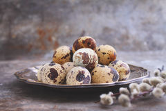 Quail eggs in a metal plate on a rustic background. With branches of willow Royalty Free Stock Photos